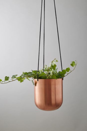 copperplanter