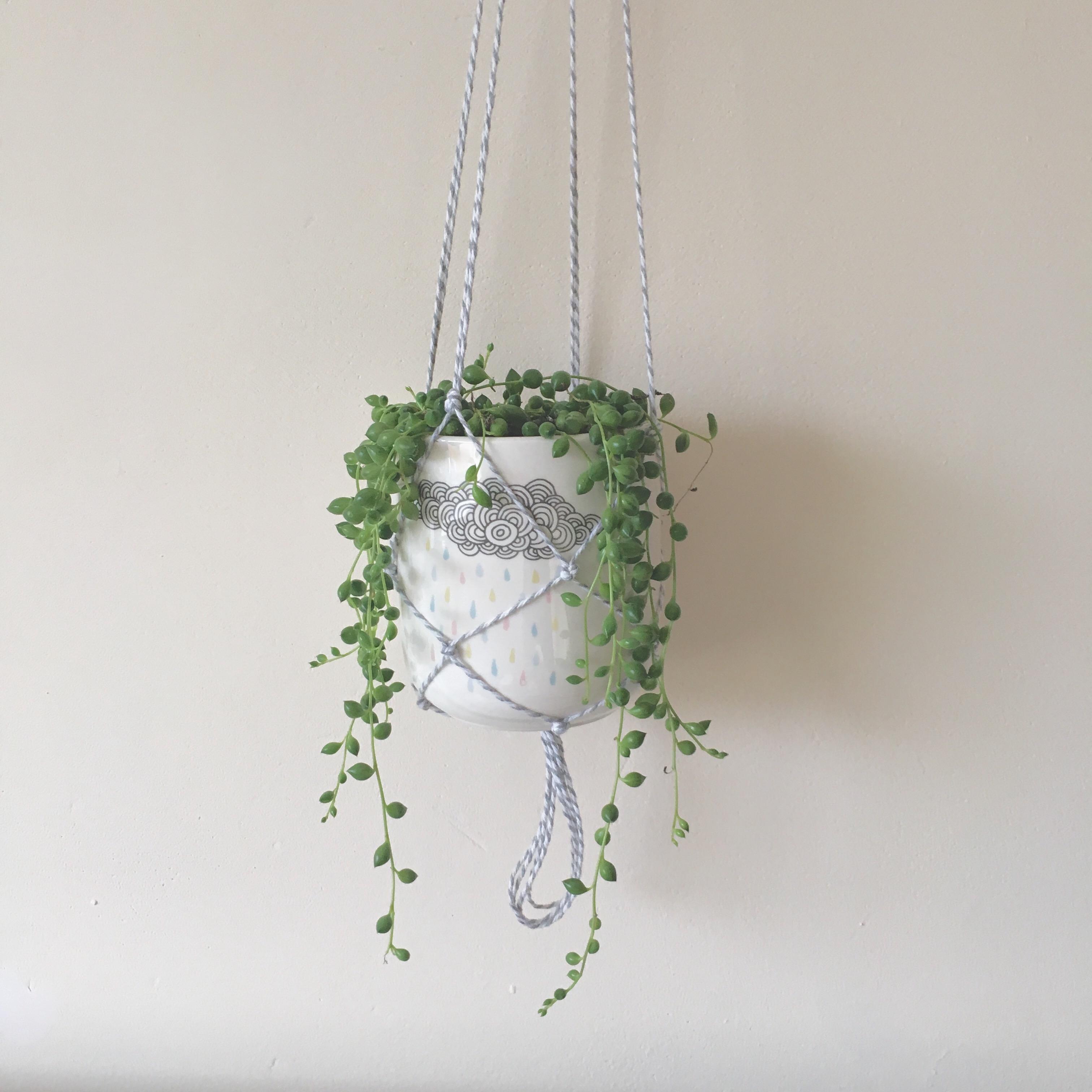macrame plant hanger diy u2013 bugs and birds blog