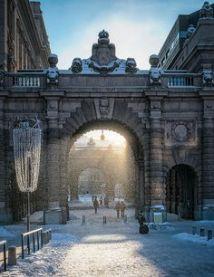 Stockholm | Wanderlust Wishlist | Bugs & Birds