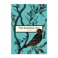 The running sky book by tim dee