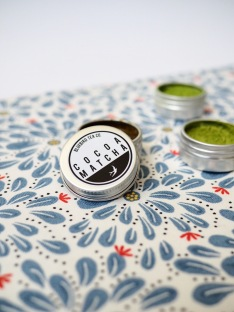 Bugs and Birds Lip Balm Lip scrub Matcha DIY