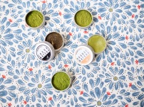 Bugs and Birds Lip Balm Lip scrub Matcha DIY