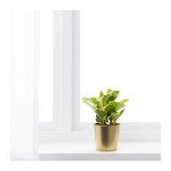 daidai-plant-pot-brass-colour__0522768_pe643438_s4